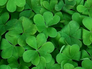 The Baltimore St. Patrick's Day Parade and 5K Returns March 15