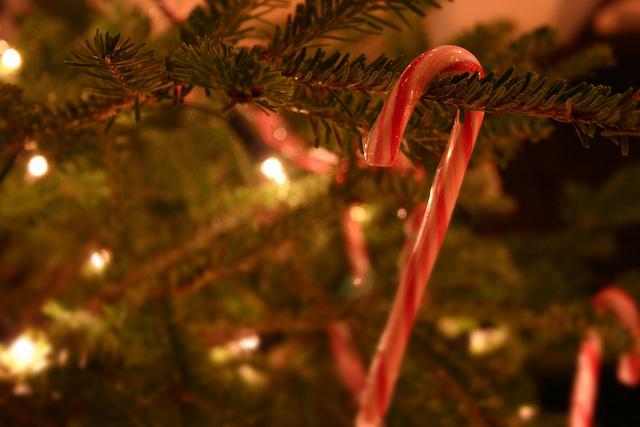 Tastes of the Season Neighborhood Tour: Enjoy a Series of Holiday Treats on December 17th