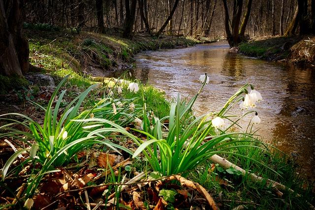 Unpack a Spring Picnic at Eastern Regional Park